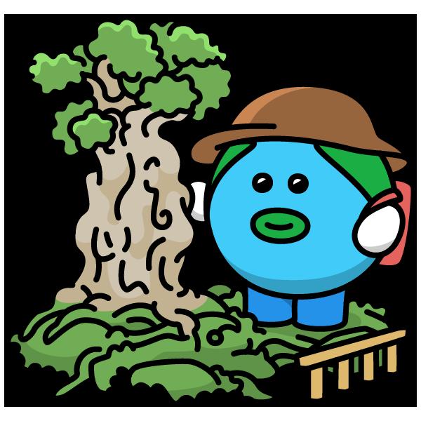 屋久島国立公園指定